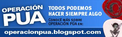 Operación Púa